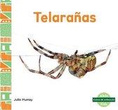Telaranas (Webs)