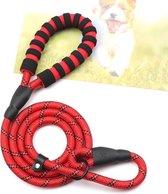 Hondenriem - Sliplijn - Cesar Millan - Trainings halsband- Rood - Pixypet