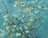 Joeni® – Schilderen op nummer – 40x50cm – Geschenkverpakking – Amandelbloesem - Vincent van Gogh – Los Canvasdoek