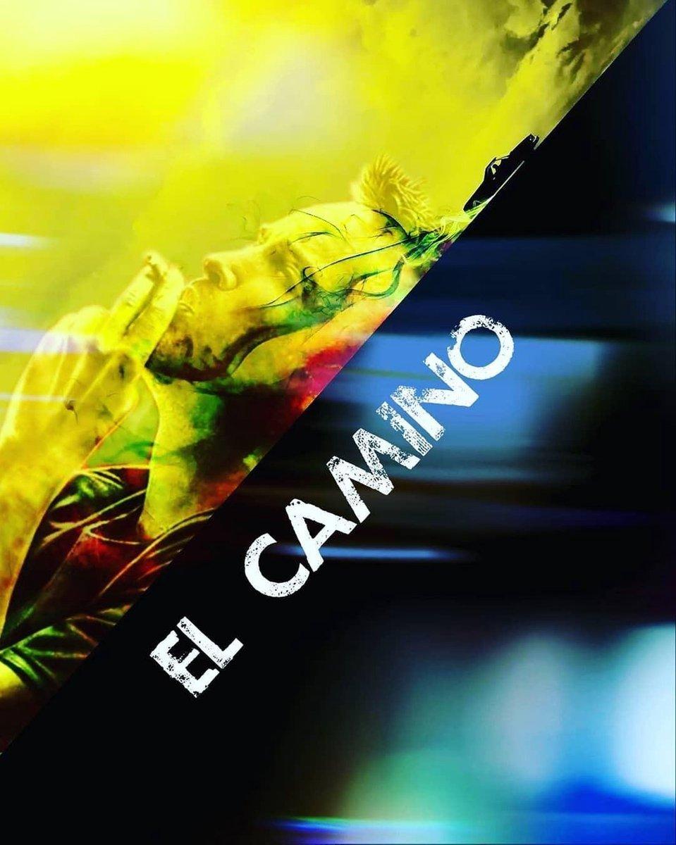 EL CAMINO: A BREAKING BAD MOVIE (DVD) kopen