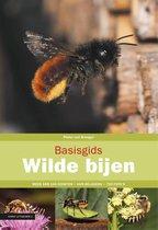 Basisgids  -   Basisgids wilde bijen