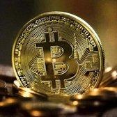 Bitcoin BTC Munt | Met Plastic Hardcase | Goud