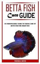 Betta Fish Care Guide