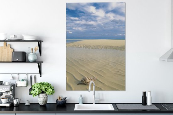 Kroonslak op een prachtig wit strand in Nationaal park Lucayan Canvas 80x120 cm - Foto print op Canvas schilderij (Wanddecoratie woonkamer / slaapkamer)