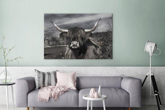 Bol Com Schattige Schotse Hooglander Zwart Wit Canvas 180x120 Cm Foto Print Op Canvas
