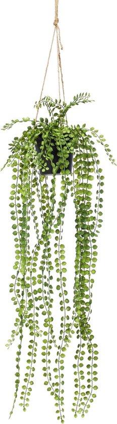 Kunst hangplant Ficus Pumila