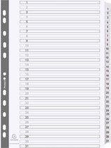 10x Bedrukte tabbladen karton 160g - geplastificeerde tabs - 31 tabs - 1 tot 31 - A4, Wit
