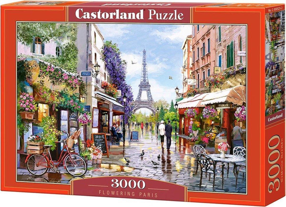 Flowering Paris - 3000 stukjes