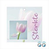 20 Sterkte kaartjes - tulp - bloemen - 7 x 7 cm
