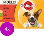 Pedigree Adult Maaltijdzakjes Multipack - Vlees & Gevogelte in Gelei - Hondenvoer - 4 x 12 x 100g