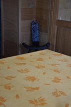 Zomerse Tafellakens - Tafelzeil - Tafelkleed - Duurzaam - Gemakkelijk in onderhoud - Opgerold op dunne rol - Geen plooien - Zomerfiguren Geel - 140cm x 160cm