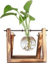 QUVIO Houten standaard waterplantje / Glazen vaas voor waterplant / Ook voor het stekken van waterplanten - Bruin