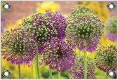 Tuinposter –Paarse Bloemen– 40x30 Foto op Tuinposter (wanddecoratie voor buiten en binnen)