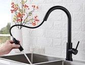Excellent Wellness M-88117 Keukenkraan  - 40 cm Hoog - RVS - Mat Zwart