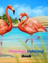 Flamingo Coloring Book