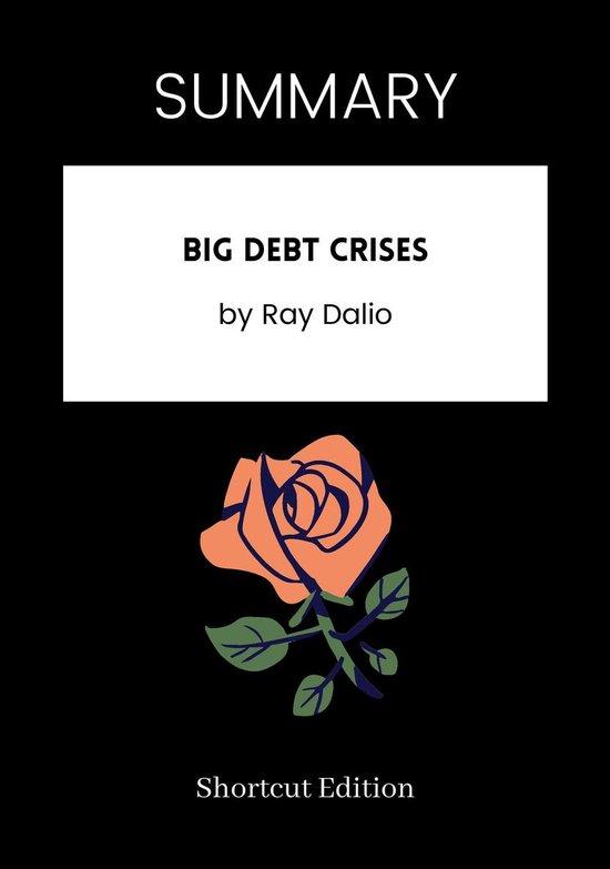 Boek cover SUMMARY - Big Debt Crises van Shortcut Edition (Onbekend)