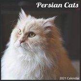 Persian Cats 2021 Calendar