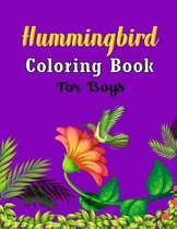 Hummingbird Coloring Book For Boys