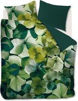 BH Stella Green 240x200/220
