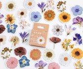 Set van 46 stickers - Bloemen 2 - Flower sticker