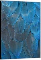 Dibond –Blauwe Veren – 80x120cm Foto op Aluminium (Wanddecoratie van metaal)