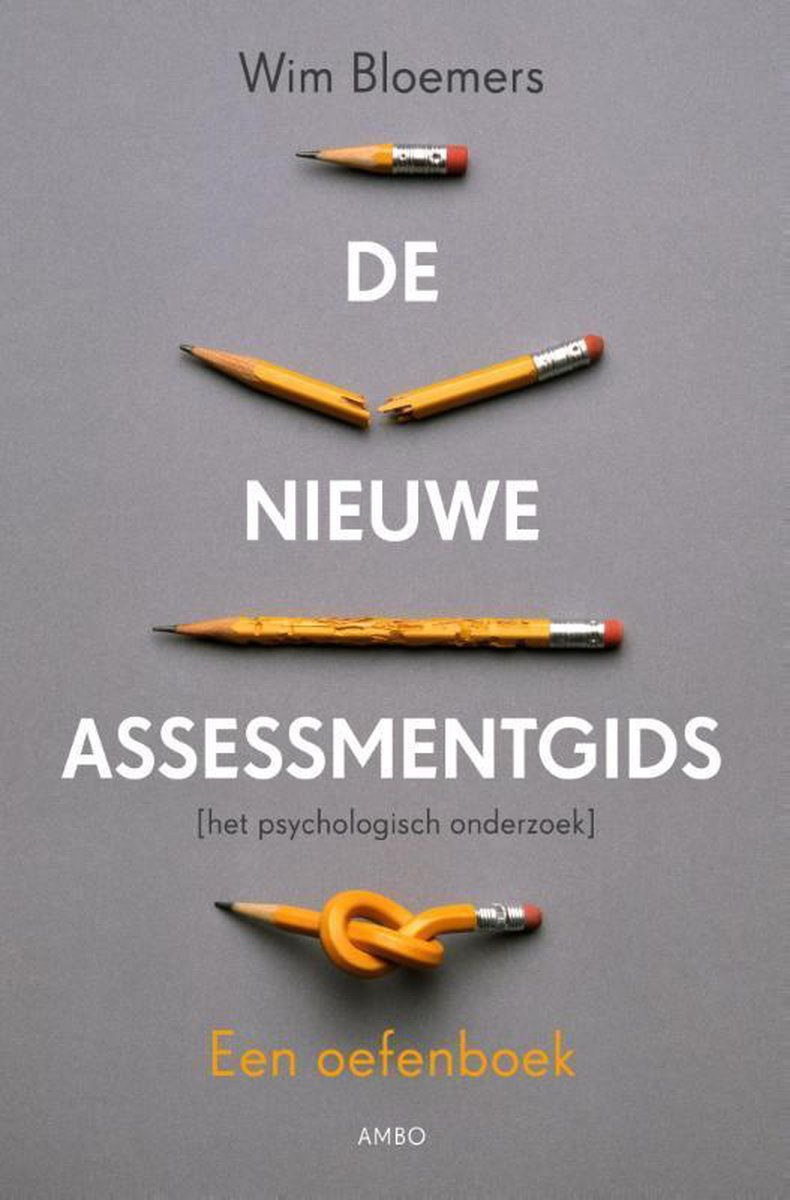 De nieuwe assessmentgids - Wim Bloemers