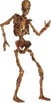 """""""Halloween decoratie van skelet 180 cm - Feestdecoratievoorwerp - One size"""""""