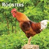 Rooster Kalender 2021