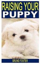 Raising Your Puppy