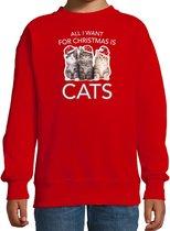 Kitten Kerstsweater / Kerst trui All I want for Christmas is cats rood voor kinderen - Kerstkleding / Christmas outfit 3-4 jaar (98/104) - Kersttrui