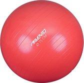 Avento Fitness/Gymbal - Ø 75 cm - Roze
