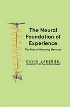 The Neural Foundation of Experience