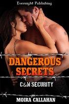 Omslag Dangerous Secrets
