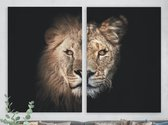 Schilderijen op Canvas Leeuw en Leeuwin koppel - Tweeluik - 75 x 100 cm | PosterGuru
