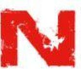 Nikko Sports Kickbokshandschoenen