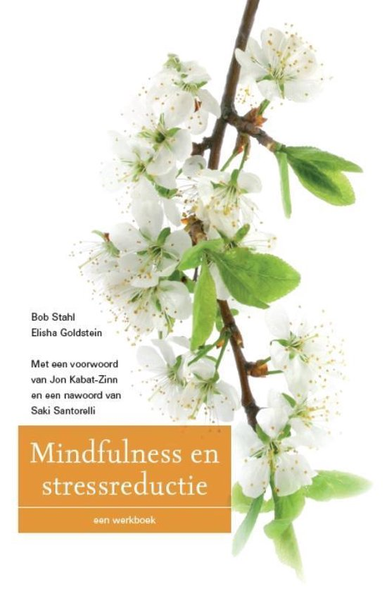 Mindfulness en stressreductie - Bob Stahl | Readingchampions.org.uk