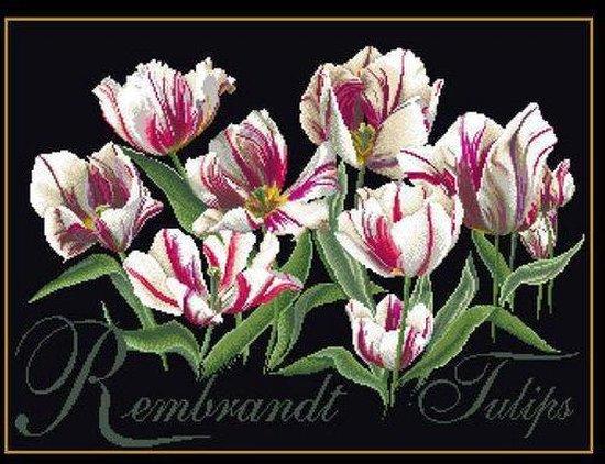 Thea Gouverneur Borduurpakket 447.05 Rembrandt Tulpen - Aida stof zwart 100% katoen