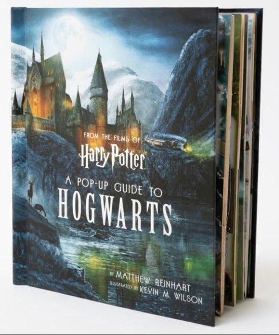 Boek cover Harry Potter van Matthew Reinhart (Hardcover)