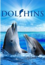 Dolphins - Disvovery