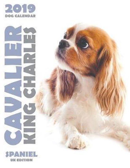 Cavalier King Charles Spaniel 2019 Dog Calendar (UK Edition)