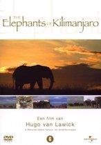 H. Van Lawick: Elephants Of Kilimanja(D)