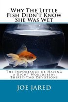 Why the Little Fish Didn't Know She Was Wet