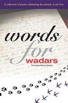 Words for Wadars