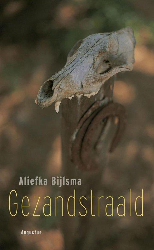 Gezandstraald - Aliefka Bijlsma   Fthsonline.com