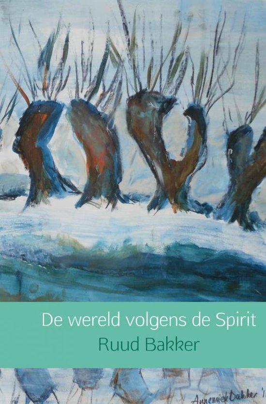 De wereld volgens de Spirit - Ruud Bakker | Fthsonline.com