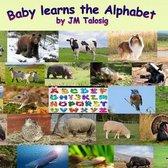 Baby Learns the Alphabet