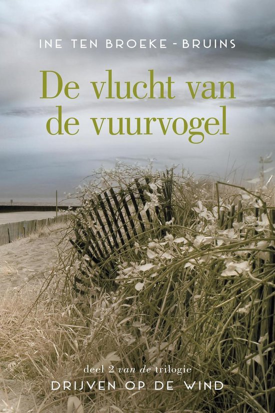 Boek cover Drijven op de wind 2 - De vlucht van de vuurvogel van Ine Ten Broeke-Bruins (Onbekend)