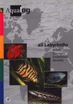 Aqualog All Labyrinths, Bettas, Gouramis, Snakeheads and Nandids