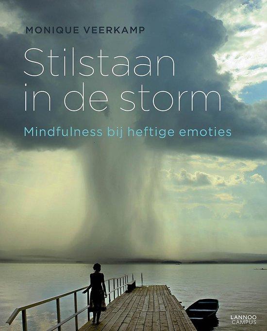 Stilstaan in de storm - Monique Veerkamp |