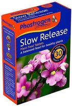 Phostrogen voedingstabletten | 1 verp. à  100 tabletten